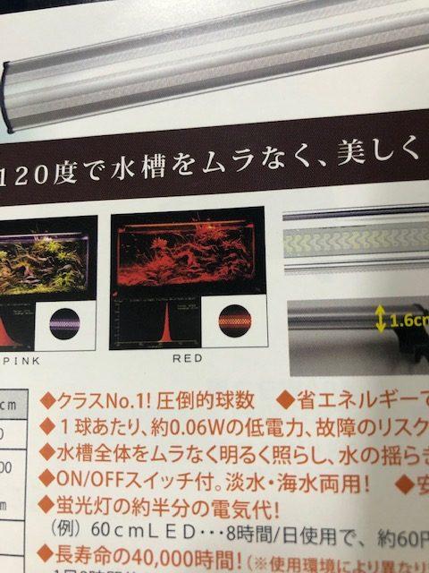 zensui-001